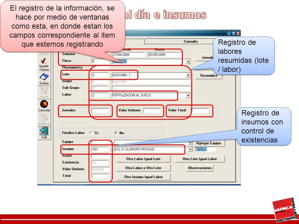 Registro de labores resumidas (lote / labor) Registro de insumos con control de existencias El registro de la información, se hace por medio de ventanas como esta, en donde estan los campos correspondiente al item que estemos registrando