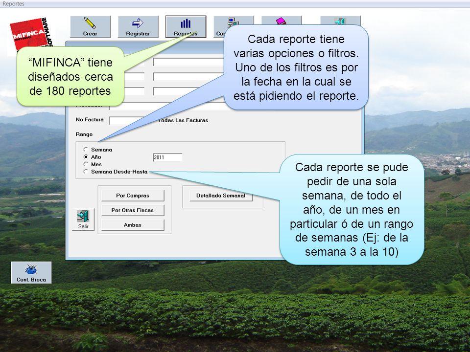 MIFINCA tiene diseñados cerca de 180 reportes Cada reporte tiene varias opciones o filtros.