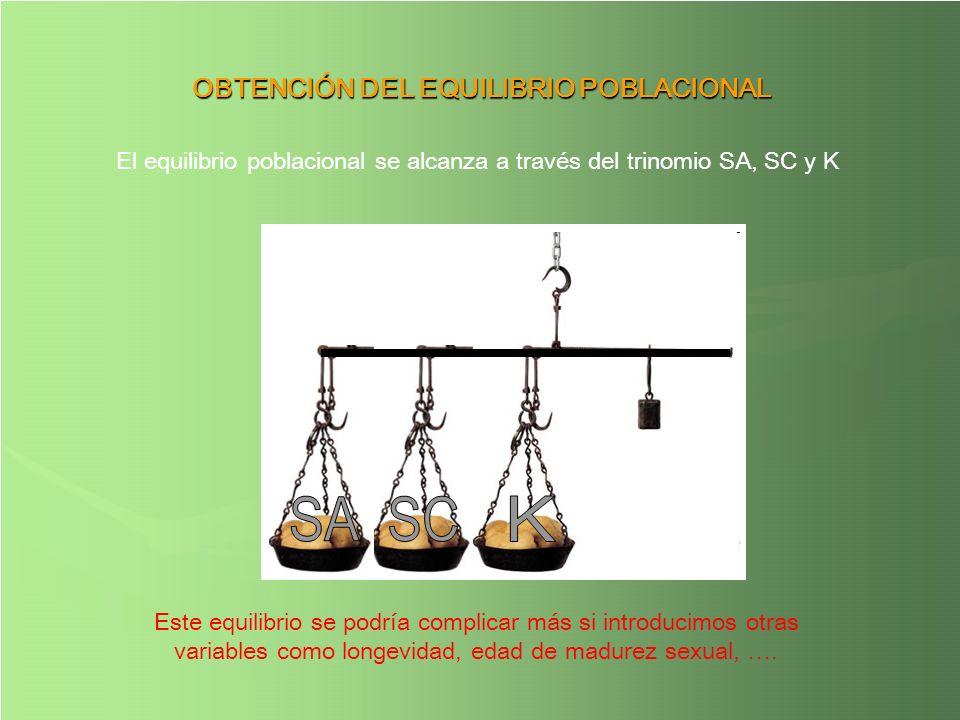 El equilibrio poblacional se alcanza a través del trinomio SA, SC y K OBTENCIÓN DEL EQUILIBRIO POBLACIONAL Este equilibrio se podría complicar más si
