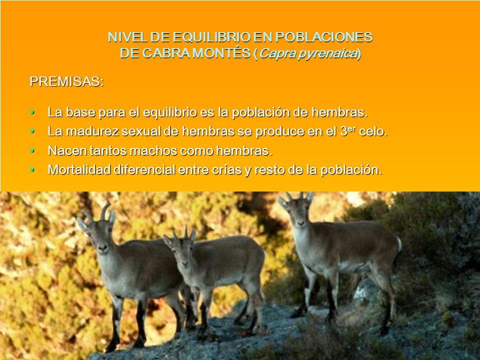 NIVEL DE EQUILIBRIO EN POBLACIONES DE CABRA MONTÉS (Capra pyrenaica) PREMISAS: La base para el equilibrio es la población de hembras.La base para el e