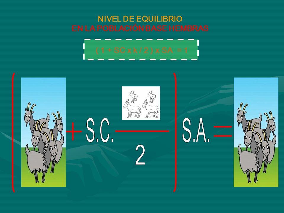 ( 1 + SC x k / 2 ) x SA = 1 NIVEL DE EQUILIBRIO EN LA POBLACIÓN BASE HEMBRAS