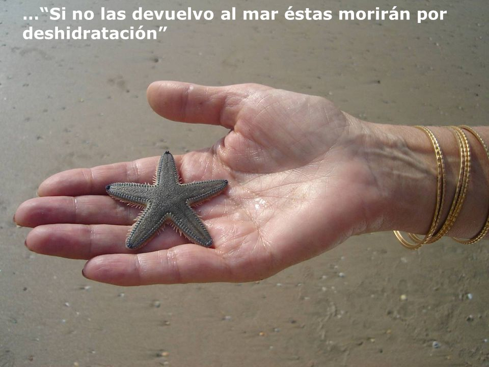 Ella me respondió: Estoy lanzando, nuevamente al mar, las estrellas que las olas han dejado en la arena…