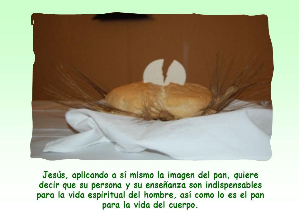 La imagen del pan aparece a menudo en la Biblia, lo mismo que la del agua. El pan y el agua representan los alimentos primarios, indispensables para l