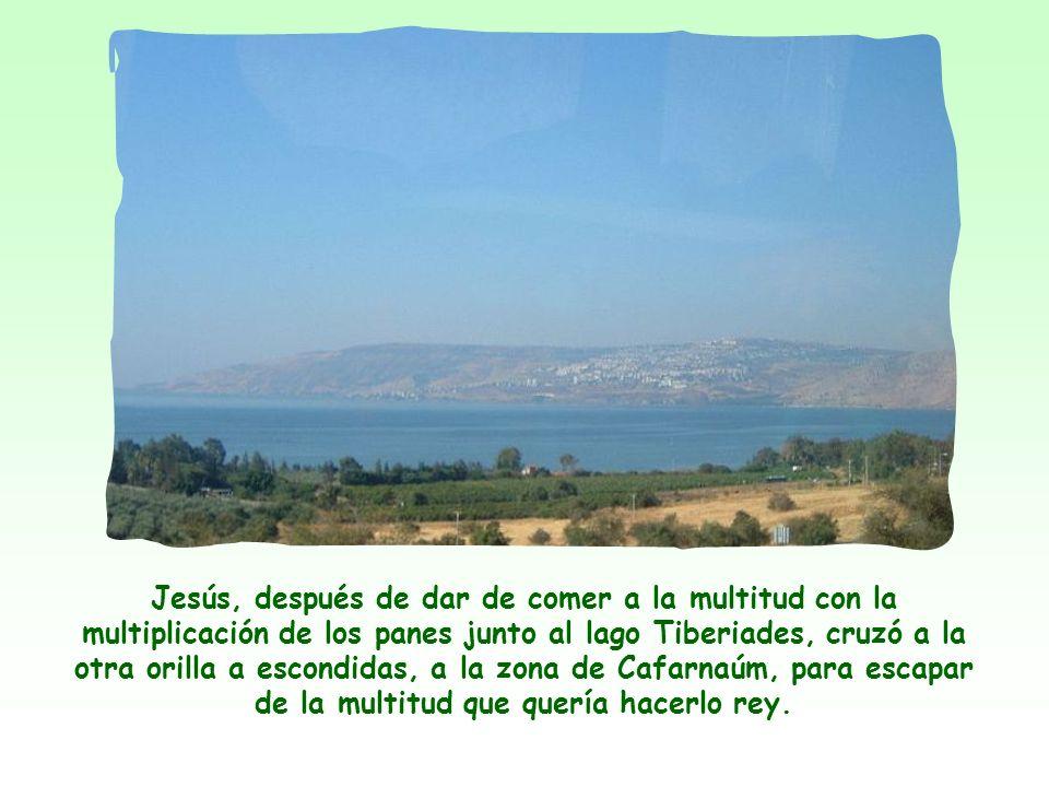 Jesús, después de dar de comer a la multitud con la multiplicación de los panes junto al lago Tiberiades, cruzó a la otra orilla a escondidas, a la zona de Cafarnaúm, para escapar de la multitud que quería hacerlo rey.