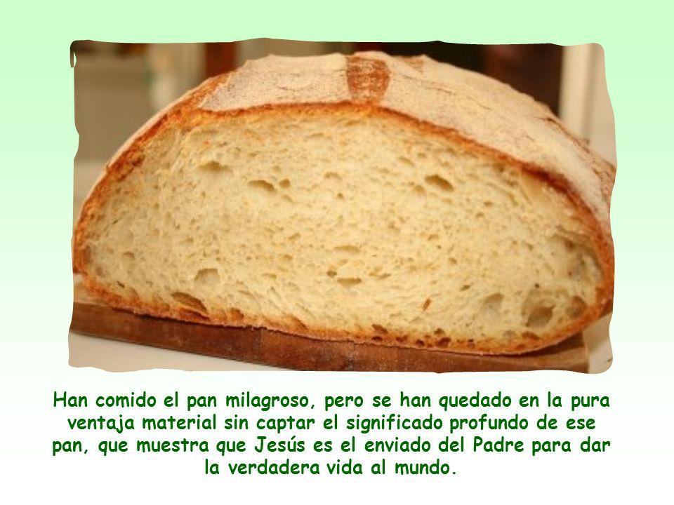 Han comido el pan milagroso, pero se han quedado en la pura ventaja material sin captar el significado profundo de ese pan, que muestra que Jesús es el enviado del Padre para dar la verdadera vida al mundo.