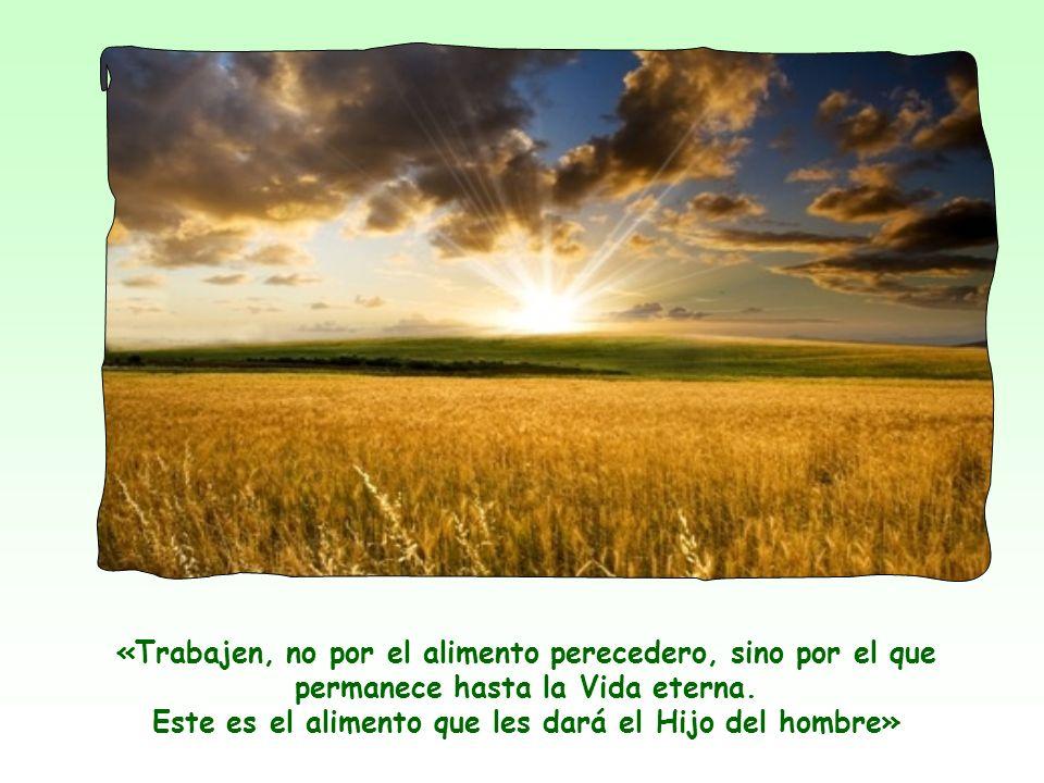 Ven en Él solamente a un taumaturgo, a un Mesías terrenal, capaz de darles el alimento material en abundancia y a buen precio.
