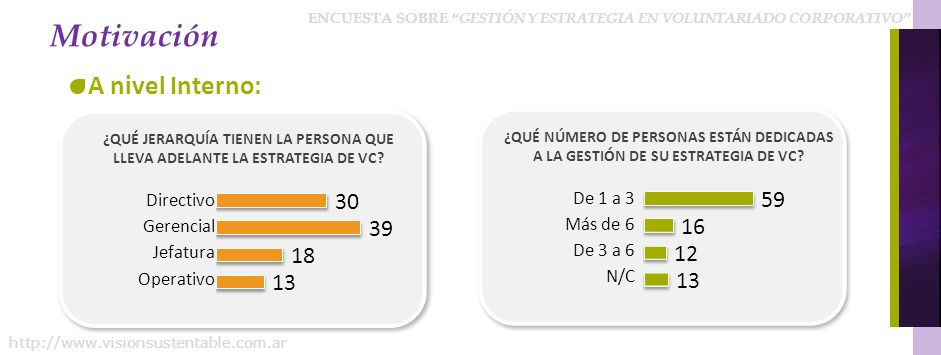 ENCUESTA SOBRE GESTIÓN Y ESTRATEGIA EN VOLUNTARIADO CORPORATIVO http://www.visionsustentable.com.ar ¿QUÉ JERARQUÍA TIENEN LA PERSONA QUE LLEVA ADELANT