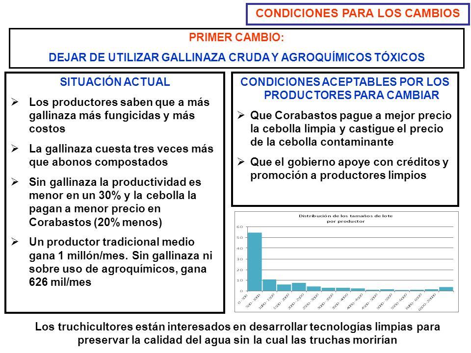 PRIMER CAMBIO: DEJAR DE UTILIZAR GALLINAZA CRUDA Y AGROQUÍMICOS TÓXICOS CONDICIONES PARA LOS CAMBIOS SITUACIÓN ACTUAL Los productores saben que a más