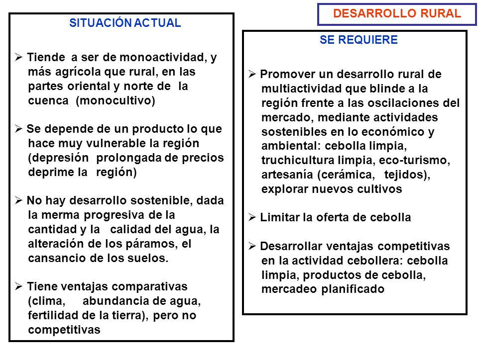DESARROLLO RURAL SITUACIÓN ACTUAL Tiende a ser de monoactividad, y más agrícola que rural, en las partes oriental y norte de la cuenca (monocultivo) S