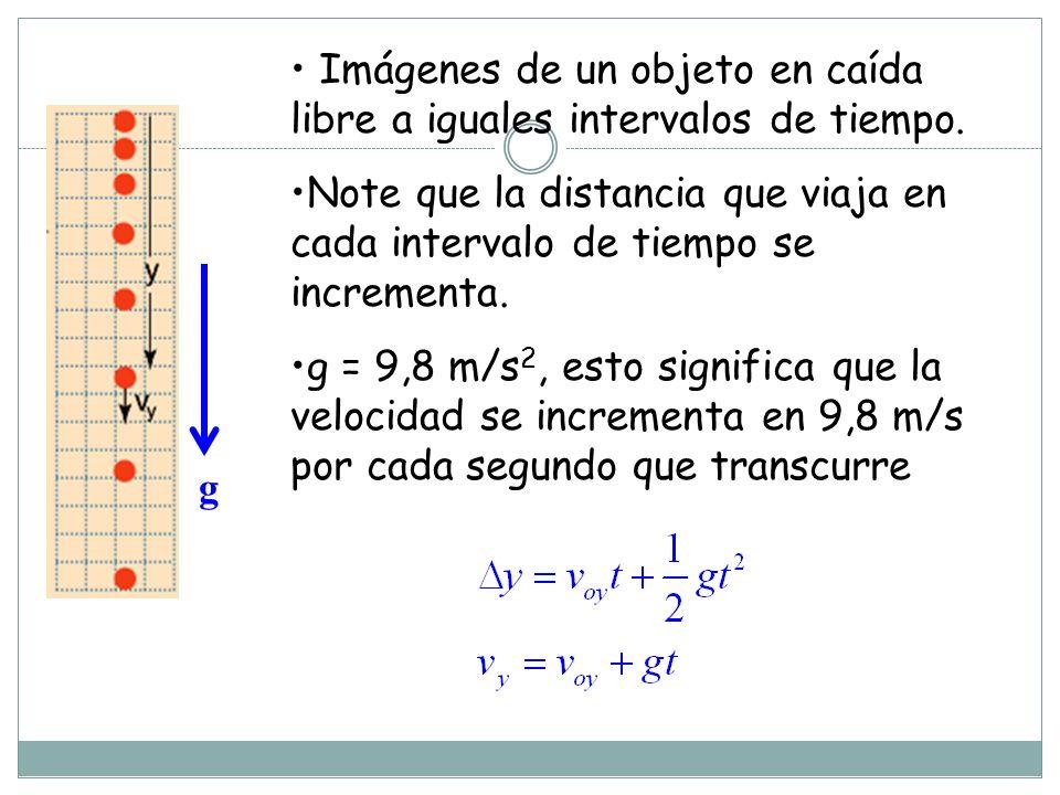 Imágenes de un objeto en caída libre a iguales intervalos de tiempo.