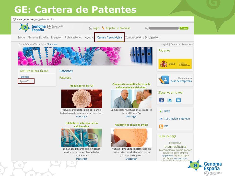 GE: Cartera de Patentes