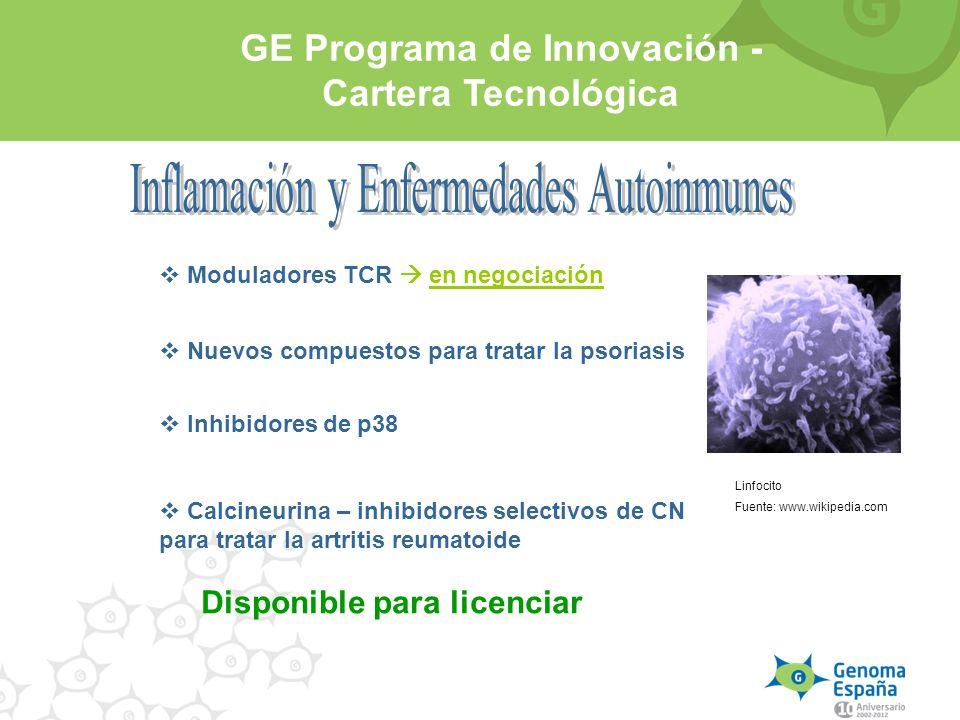GE Programa de Innovación - Cartera Tecnológica Disponible para licenciar Inhibidores de p38 Calcineurina – inhibidores selectivos de CN para tratar l
