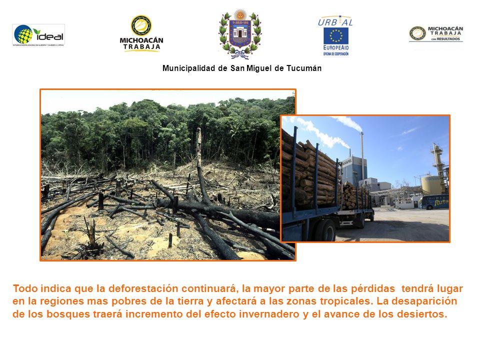 Municipalidad de San Miguel de Tucumán Todo indica que la deforestación continuará, la mayor parte de las pérdidas tendrá lugar en la regiones mas pobres de la tierra y afectará a las zonas tropicales.