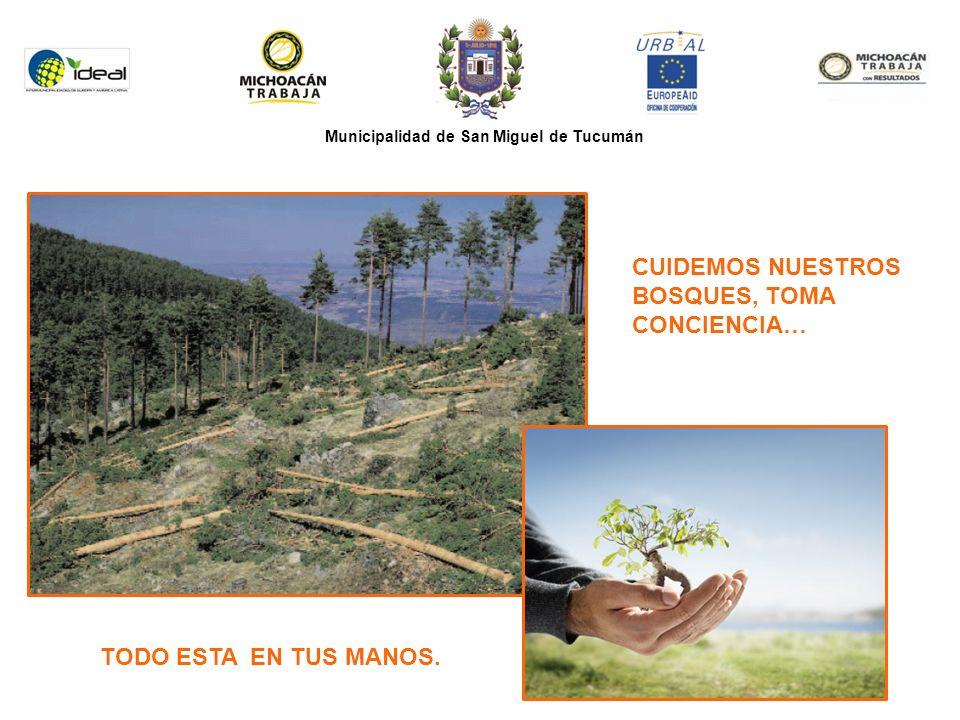 Municipalidad de San Miguel de Tucumán CUIDEMOS NUESTROS BOSQUES, TOMA CONCIENCIA… TODO ESTA EN TUS MANOS.