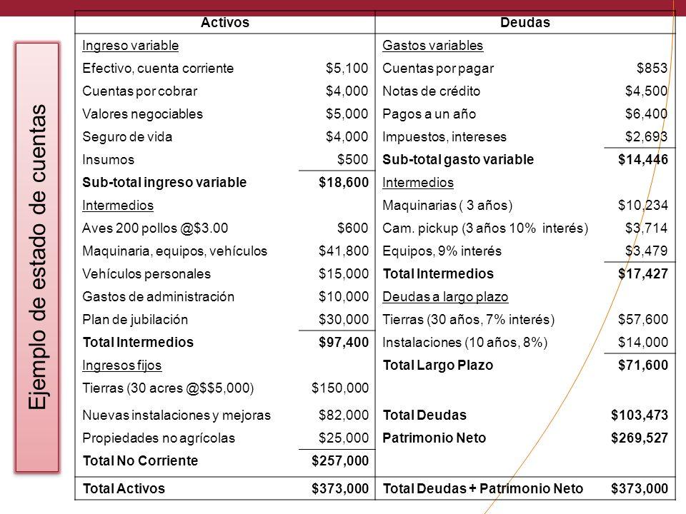 ActivosDeudas Ingreso variableGastos variables Efectivo, cuenta corriente$5,100Cuentas por pagar$853 Cuentas por cobrar$4,000Notas de crédito$4,500 Va