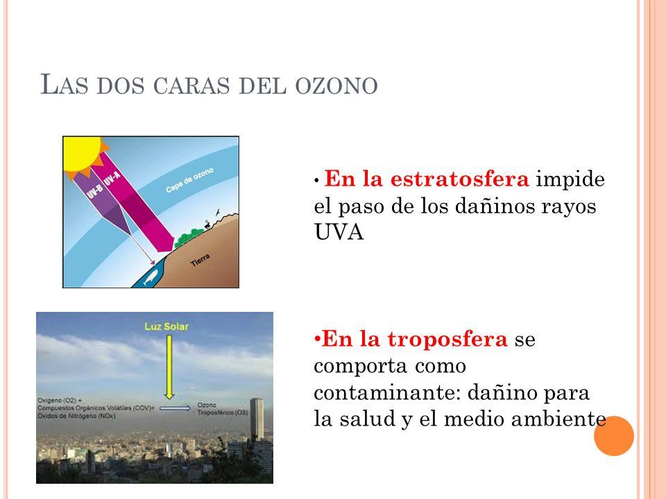 L AS DOS CARAS DEL OZONO En la estratosfera impide el paso de los dañinos rayos UVA En la troposfera se comporta como contaminante: dañino para la sal