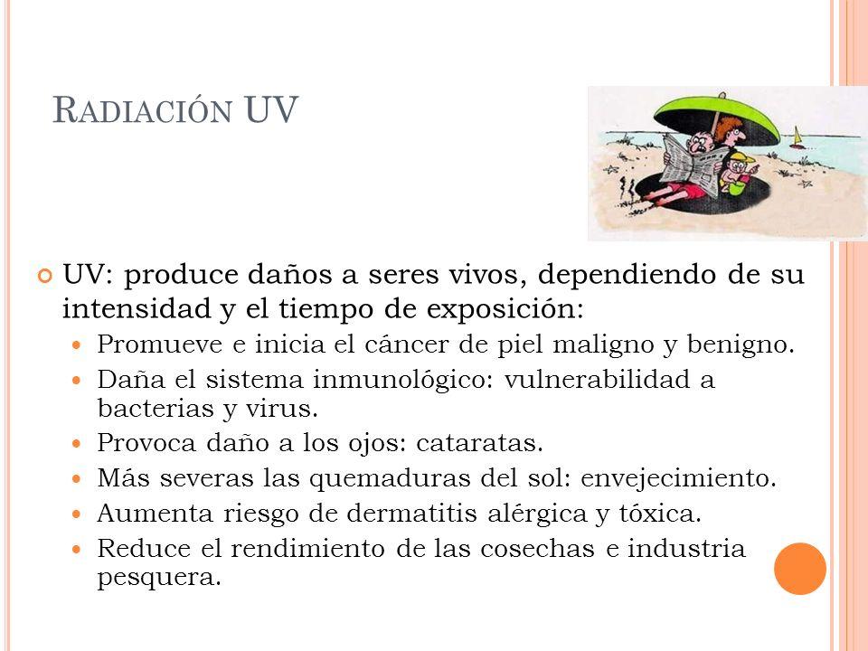 R ADIACIÓN UV UV: produce daños a seres vivos, dependiendo de su intensidad y el tiempo de exposición: Promueve e inicia el cáncer de piel maligno y b