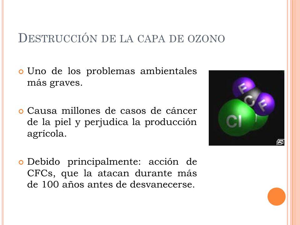 D ESTRUCCIÓN DE LA CAPA DE OZONO Uno de los problemas ambientales más graves. Causa millones de casos de cáncer de la piel y perjudica la producción a