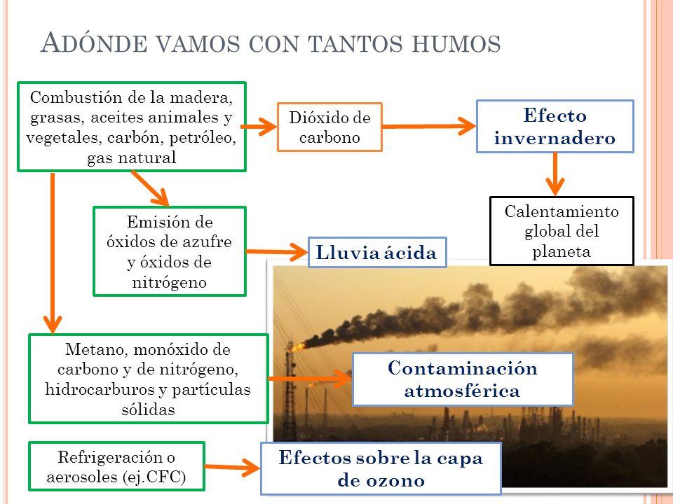 A DÓNDE VAMOS CON TANTOS HUMOS Combustión de la madera, grasas, aceites animales y vegetales, carbón, petróleo, gas natural Dióxido de carbono Efecto