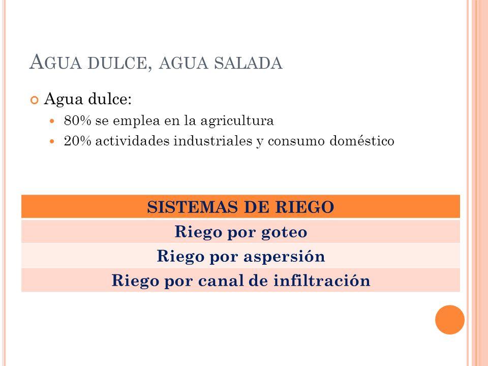 A GUA DULCE, AGUA SALADA Agua dulce: 80% se emplea en la agricultura 20% actividades industriales y consumo doméstico SISTEMAS DE RIEGO Riego por gote