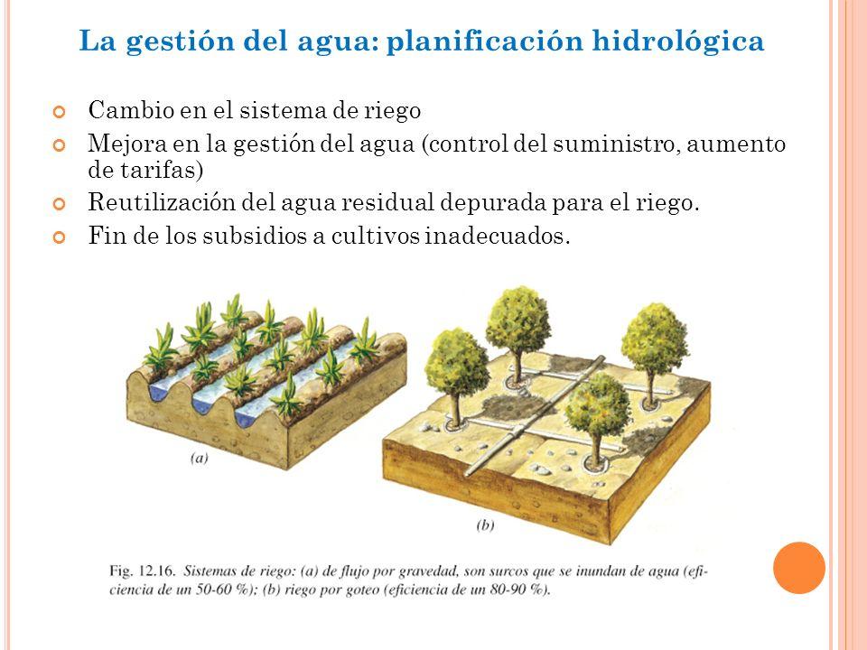 La gestión del agua: planificación hidrológica Cambio en el sistema de riego Mejora en la gestión del agua (control del suministro, aumento de tarifas