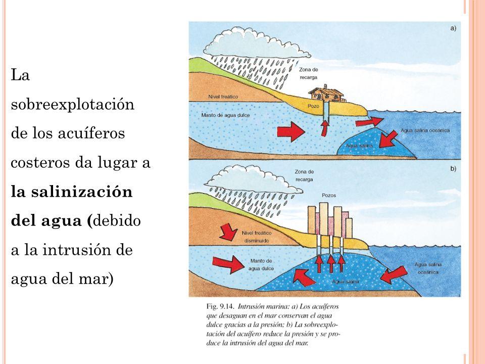 La sobreexplotación de los acuíferos costeros da lugar a la salinización del agua ( debido a la intrusión de agua del mar)