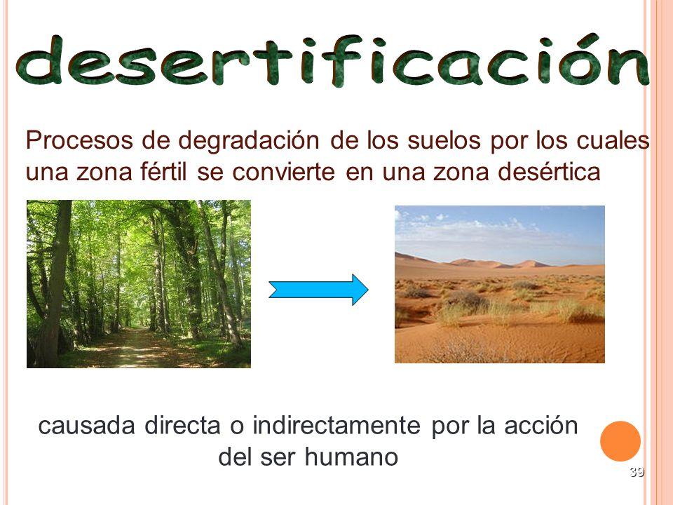 39 Procesos de degradación de los suelos por los cuales una zona fértil se convierte en una zona desértica causada directa o indirectamente por la acc