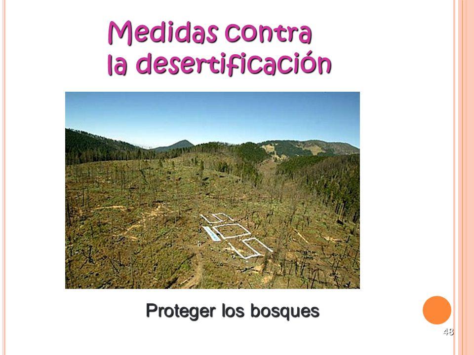 48 Medidas contra la desertificación Proteger los bosques