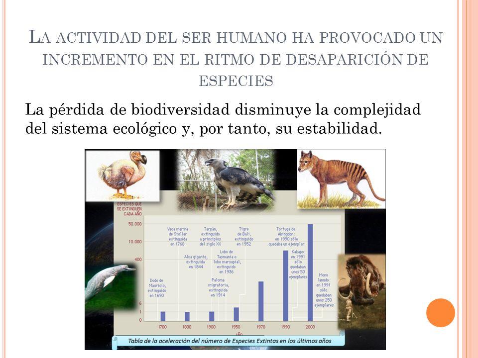 L A ACTIVIDAD DEL SER HUMANO HA PROVOCADO UN INCREMENTO EN EL RITMO DE DESAPARICIÓN DE ESPECIES La pérdida de biodiversidad disminuye la complejidad d