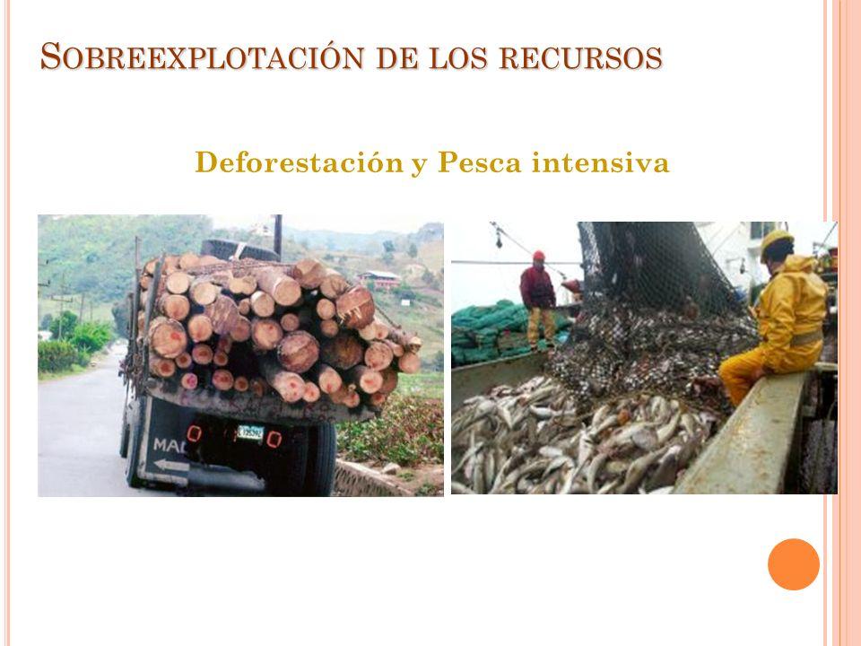 S OBREEXPLOTACIÓN DE LOS RECURSOS Deforestación y Pesca intensiva