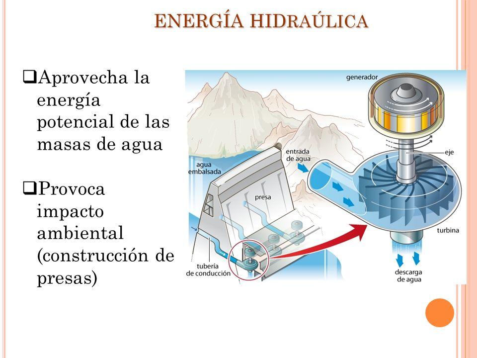 Aprovecha la energía potencial de las masas de agua Provoca impacto ambiental (construcción de presas) ENERGÍA HID RAÚLICA