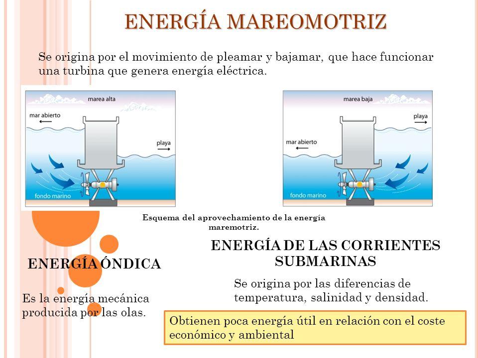 Esquema del aprovechamiento de la energía maremotriz. Se origina por el movimiento de pleamar y bajamar, que hace funcionar una turbina que genera ene