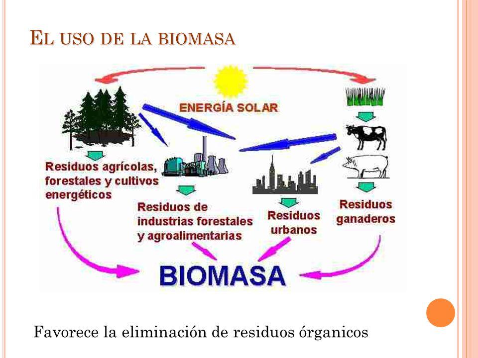 E L USO DE LA BIOMASA Favorece la eliminación de residuos órganicos