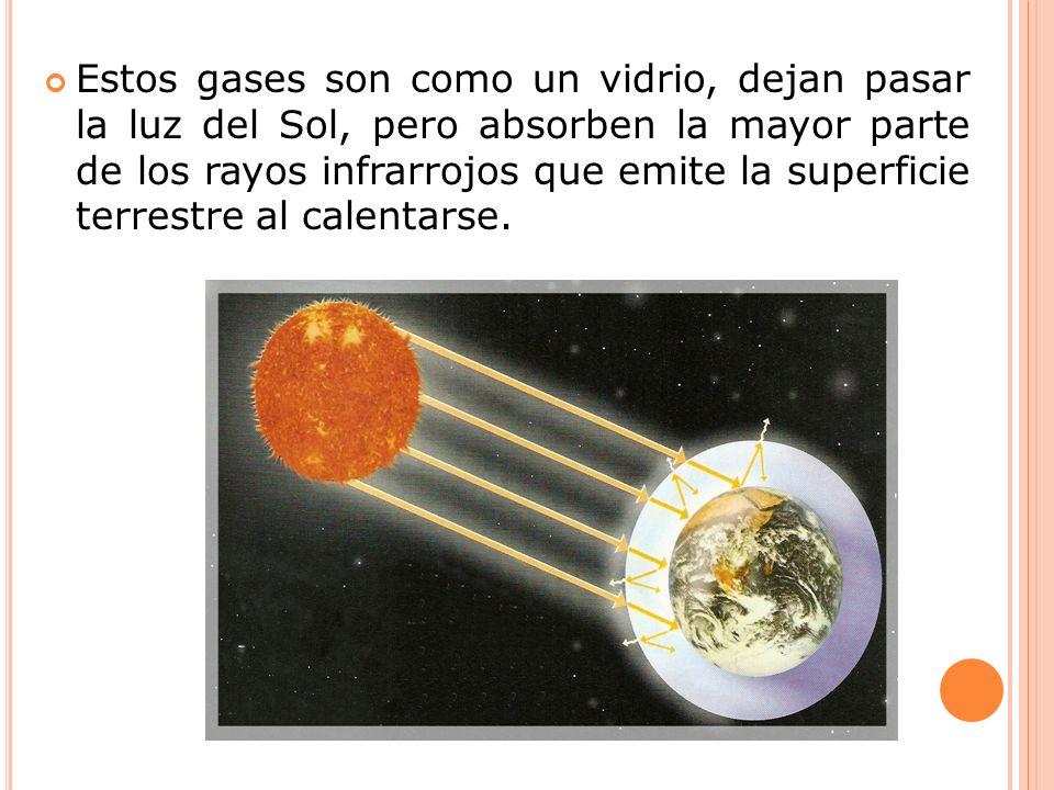 Estos gases son como un vidrio, dejan pasar la luz del Sol, pero absorben la mayor parte de los rayos infrarrojos que emite la superficie terrestre al
