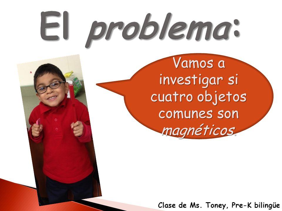 Vamos a investigar si cuatro objetos comunes son magnéticos. Clase de Ms. Toney, Pre-K bilingüe