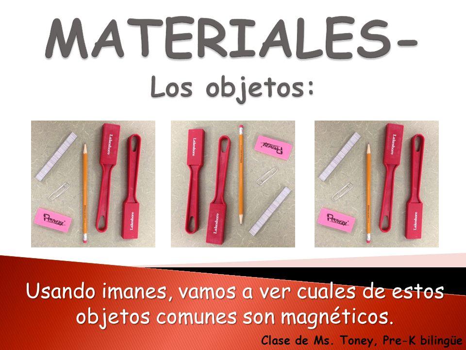 Usando imanes, vamos a ver cuales de estos objetos comunes son magnéticos. Clase de Ms. Toney, Pre-K bilingüe