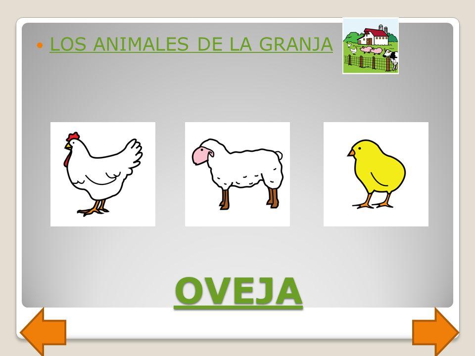 CABALLO LOS ANIMALES DE LA GRANJA