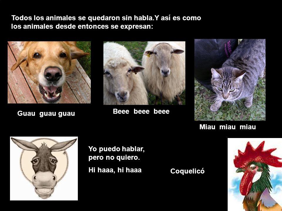 Todos los animales se quedaron sin habla.Y así es como los animales desde entonces se expresan: Beee beee beee Guau guau guau Miau miau miau Yo puedo