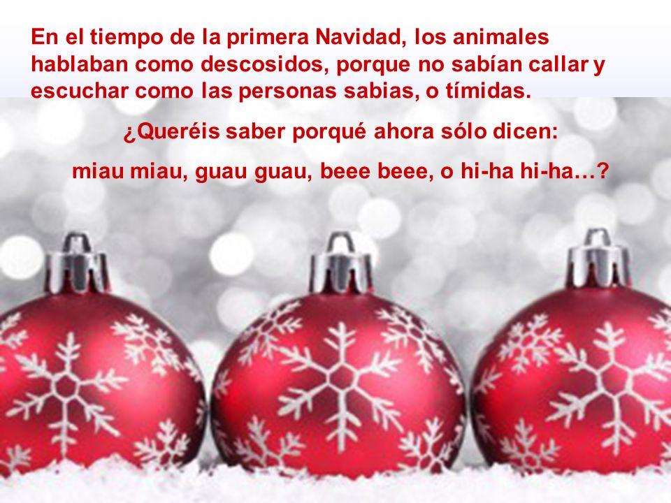 En el tiempo de la primera Navidad, los animales hablaban como descosidos, porque no sabían callar y escuchar como las personas sabias, o tímidas. ¿Qu