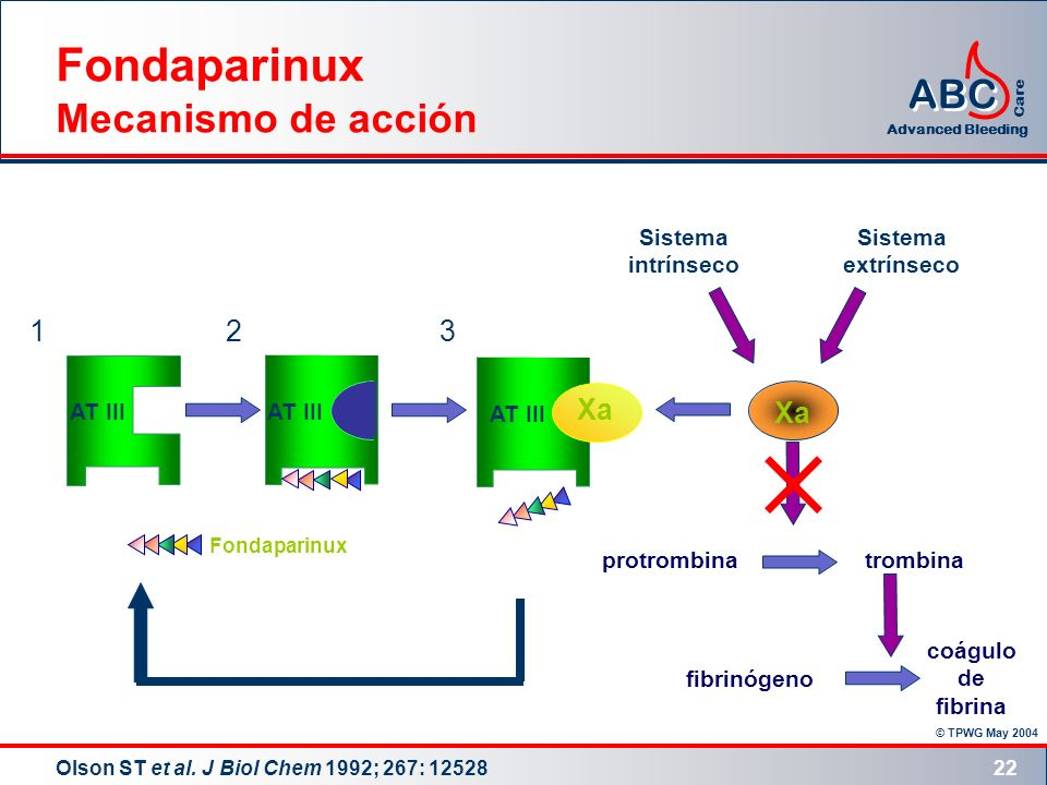 © TPWG May 2004 ABC Advanced Bleeding Care 22 Olson ST et al. J Biol Chem 1992; 267: 12528 Fondaparinux Mecanismo de acción trombina protrombina fibri