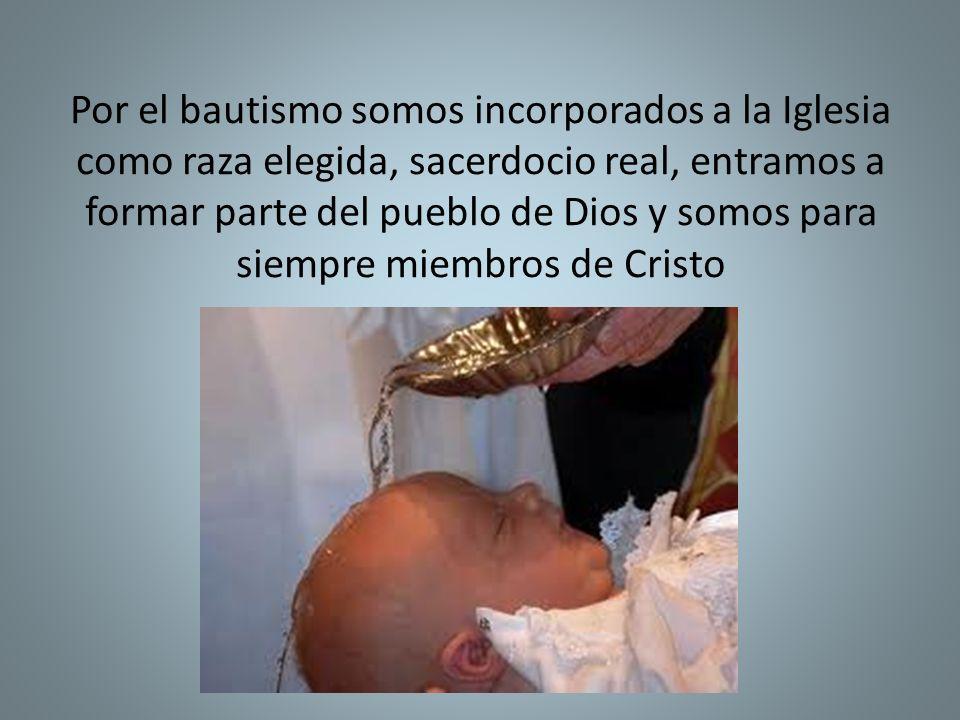 Por el bautismo somos incorporados a la Iglesia como raza elegida, sacerdocio real, entramos a formar parte del pueblo de Dios y somos para siempre mi