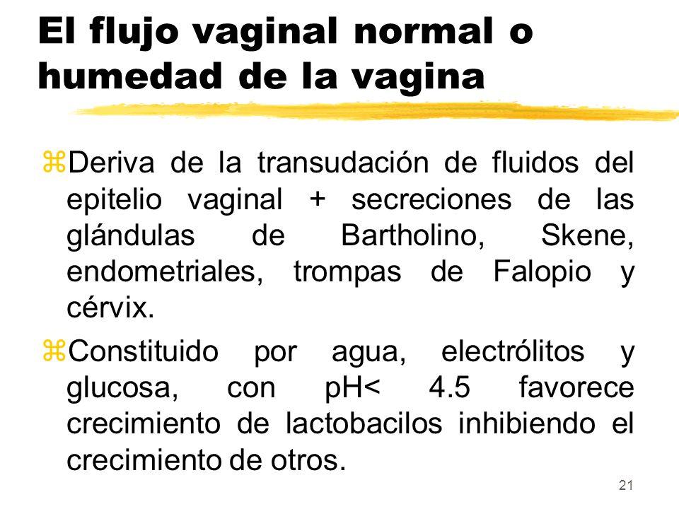 21 El flujo vaginal normal o humedad de la vagina zDeriva de la transudación de fluidos del epitelio vaginal + secreciones de las glándulas de Barthol
