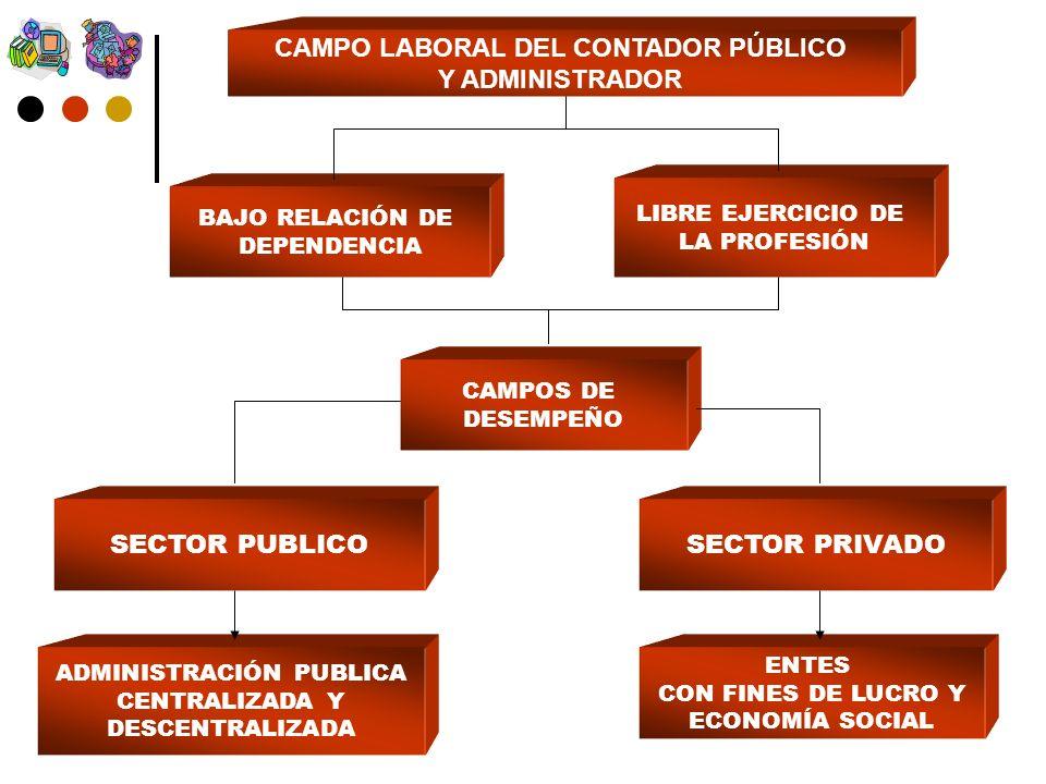 CAMPO LABORAL DEL CONTADOR PÚBLICO Y ADMINISTRADOR CAMPOS DE DESEMPEÑO LIBRE EJERCICIO DE LA PROFESIÓN BAJO RELACIÓN DE DEPENDENCIA SECTOR PUBLICOSECTOR PRIVADO ADMINISTRACIÓN PUBLICA CENTRALIZADA Y DESCENTRALIZADA ENTES CON FINES DE LUCRO Y ECONOMÍA SOCIAL