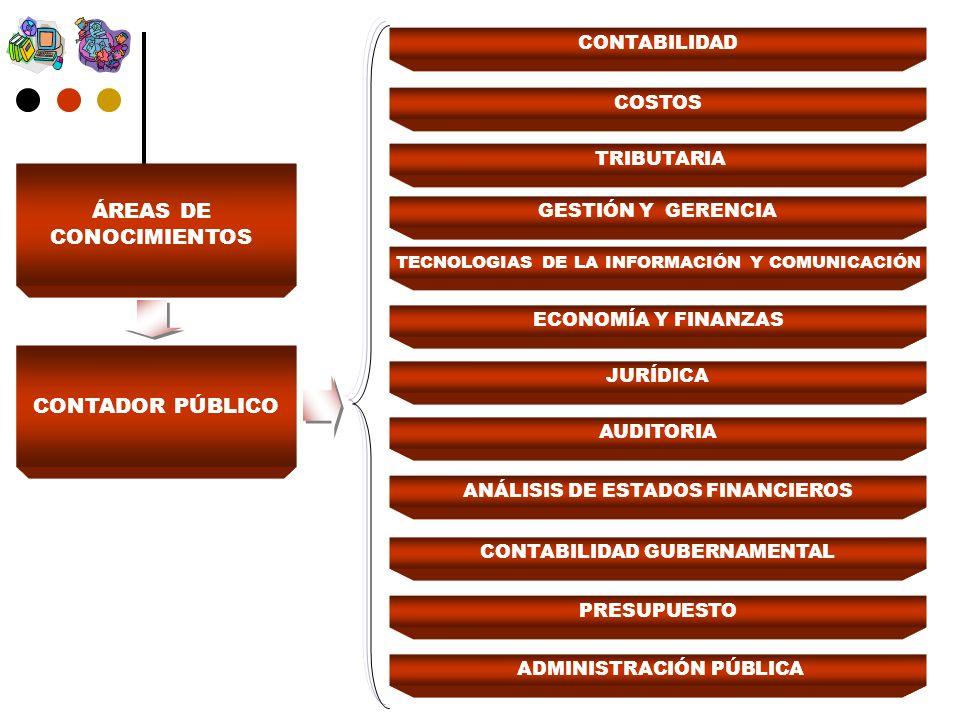 CONTADOR PÚBLICO ECONOMÍA Y FINANZAS JURÍDICA AUDITORIA ANÁLISIS DE ESTADOS FINANCIEROS CONTABILIDAD GUBERNAMENTAL PRESUPUESTO ADMINISTRACIÓN PÚBLICA TECNOLOGIAS DE LA INFORMACIÓN Y COMUNICACIÓN CONTABILIDAD COSTOS TRIBUTARIA GESTIÓN Y GERENCIA ÁREAS DE CONOCIMIENTOS