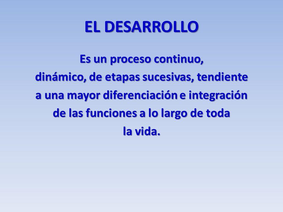EL DESARROLLO Es un proceso continuo, dinámico, de etapas sucesivas, tendiente a una mayor diferenciación e integración de las funciones a lo largo de toda la vida.