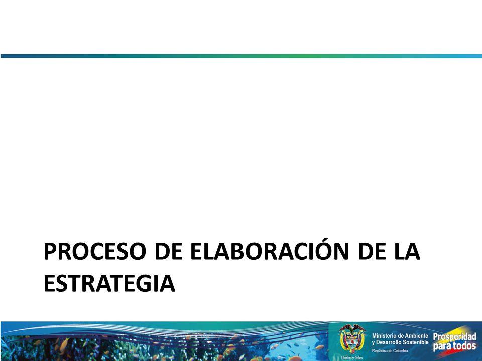 PROCESO DE ELABORACIÓN DE LA ESTRATEGIA