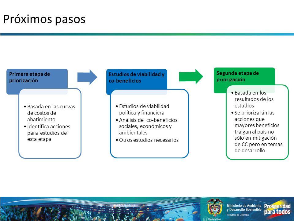 Próximos pasos Primera etapa de priorización Basada en las curvas de costos de abatimiento Identifica acciones para estudios de esta etapa Estudios de