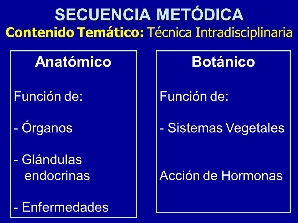 SECUENCIA METÓDICA SECUENCIA METÓDICA Contenido Temático: Técnica Intradisciplinaria Anatómico Función de: - Órganos - Glándulas endocrinas - Enfermed
