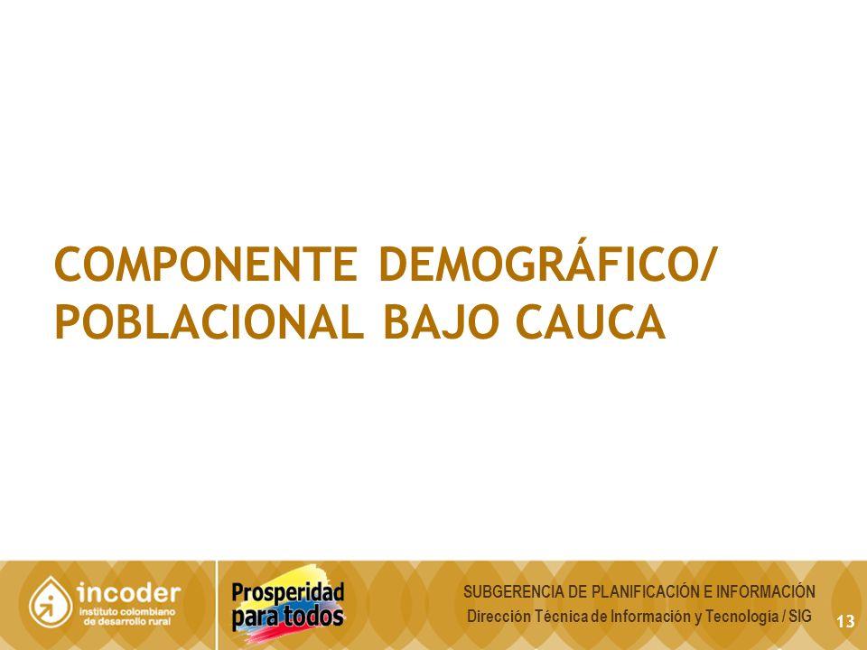 COMPONENTE DEMOGRÁFICO/ POBLACIONAL BAJO CAUCA 13 SUBGERENCIA DE PLANIFICACIÓN E INFORMACIÓN Dirección Técnica de Información y Tecnología / SIG