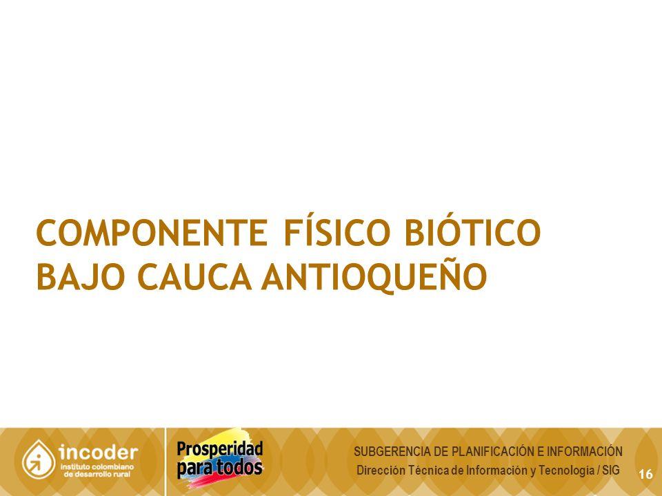 16 COMPONENTE FÍSICO BIÓTICO BAJO CAUCA ANTIOQUEÑO SUBGERENCIA DE PLANIFICACIÓN E INFORMACIÓN Dirección Técnica de Información y Tecnología / SIG